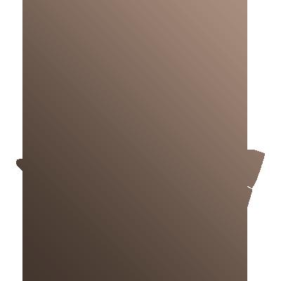 Pictogramme évoquant l'aspect local : torréfacteurs à Lyon