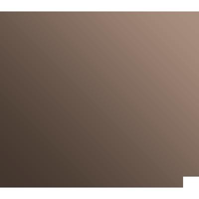 Pictogramme de paiement sécurisé